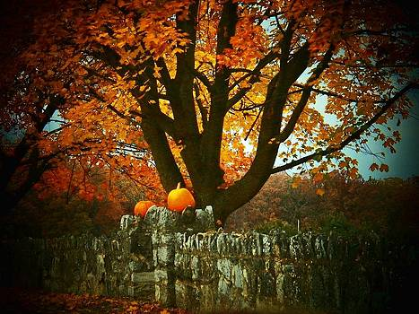 Pumpkins on the Wall by Joyce Kimble Smith