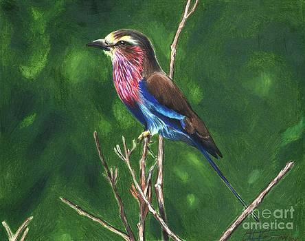 Christian Conner - Purple and Blue Bird