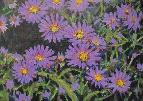 Usha Shantharam - Purple Asters