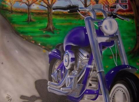 Purple Bike by Phillip Whitehead