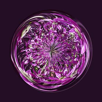 Purple Chaos by Robert Gipson