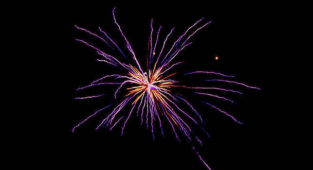 Purple Explosion by Robbie Basquez
