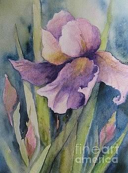 Purple Flower by Diane Agius
