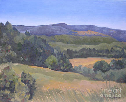 Purple Hills by Joan McGivney