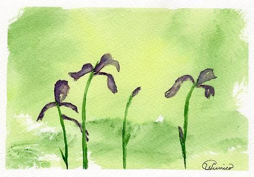 Purple Iris on Green by Wendy Cunico