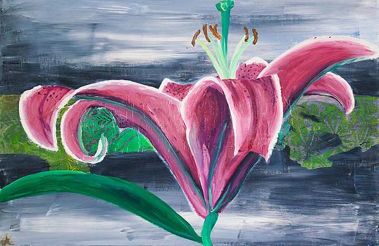 Samar Asamoah - Purple Lily on Grey