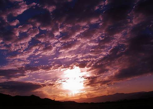 Purple Skies by Aliesha Fisher