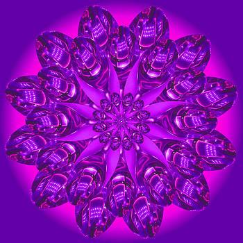 Purple Spoonz by Linda Pope