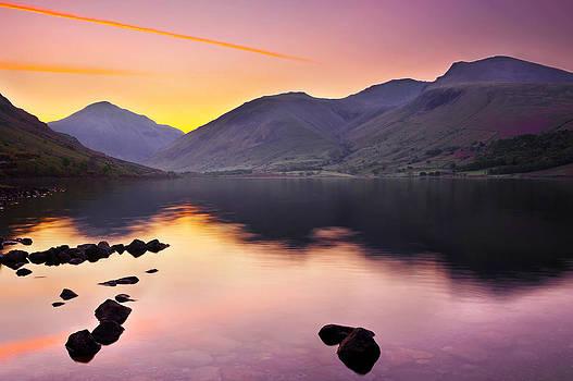 Svetlana Sewell - Purple Sunrise