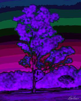Diana Haronis - Purple Tree and Rainbow Sky