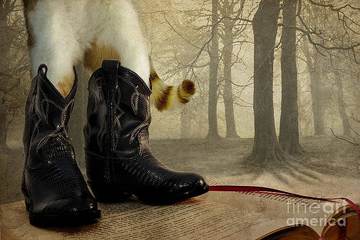 Puss in Boots by Catherine MacBride