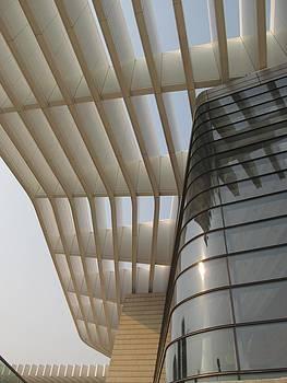 Alfred Ng - Qingdao Grand Theatre