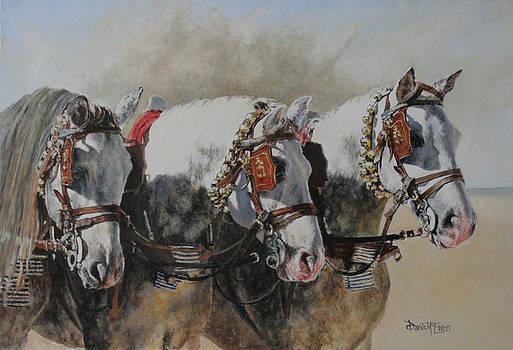 Queens of Jerez by David McEwen