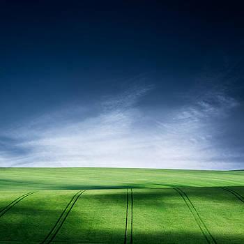 Quiet Life by Ian David Soar