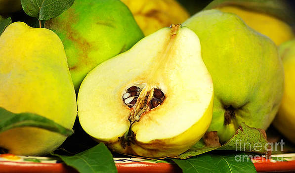 Quince Slice On A Green Background by Inacio Pires