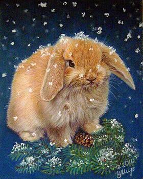 Rabbit by Irina Miroshnikova