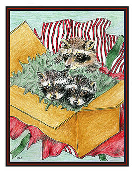 Raccoon Christmas by Marla Saville