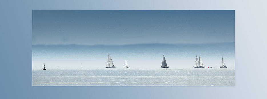 Racing Blue by Barry Hayton