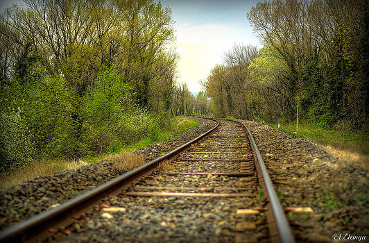 Railroad by Alexander Elzinga