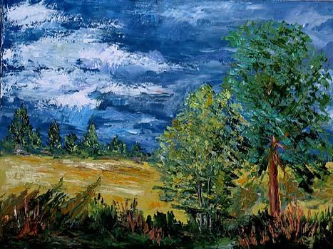 Rain 1 by Stanislav Zhejbal