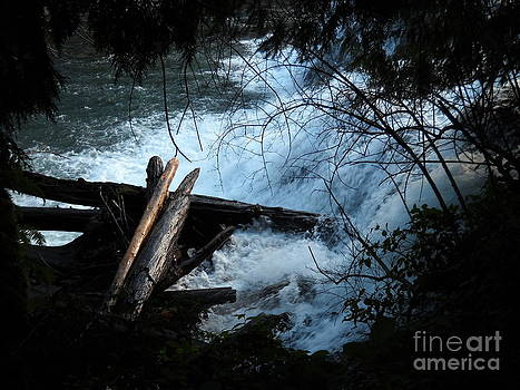 Rain Falls by Chris Murphy Elliott
