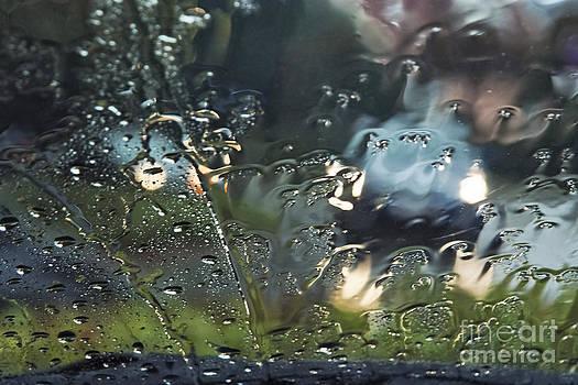 Rain in October by Wedigo Ferchland