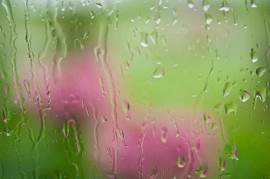 Rain Soaked Hydrangeas - Yechial Orgel by Yechial Orgel