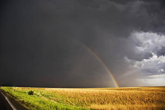 Rainbow in a Golden Field by Jennifer Brindley
