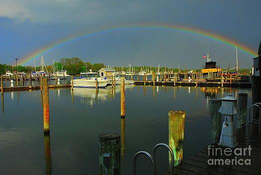 Rainbow Over Dock by Curtis Brackett