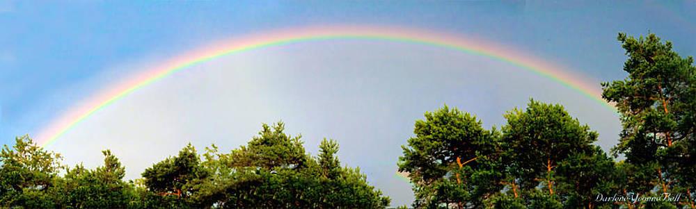 Darlene Bell - Rainbow Panorama