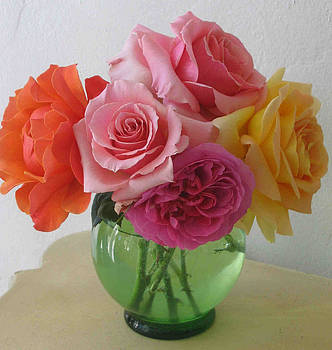 Rainbow Roses by Laurel Porter-Gaylord