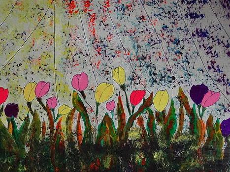 Nancy Fillip - Rainbow Row
