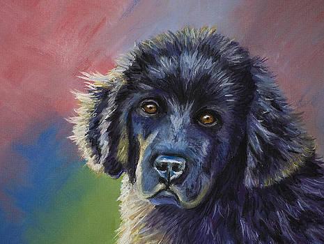 Michelle Wrighton - Rainbows and Sunshine - Newfoundland Puppy