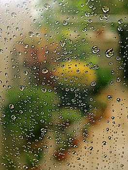 Ruth Edward Anderson - Raindrops on Glass