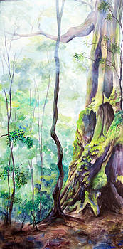 Rainforest Mist by Carol McLagan