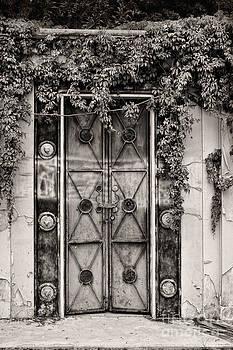 Ramshackle Door by Susan Isakson