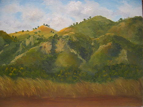 Rancho Camulos Morning by Candace Doub