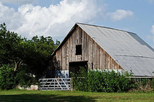 Randolph Barn by Lisa Moore
