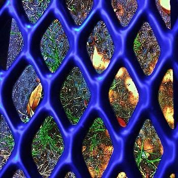 Random Shot On Top Of Blue Bench💙 by Melanie Kartawinata