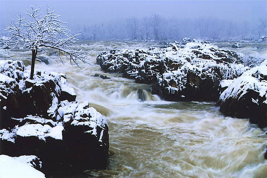 Rapid Snow by The Wholeheart