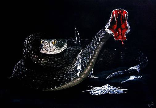 Rattlesnakes by Penny Golledge