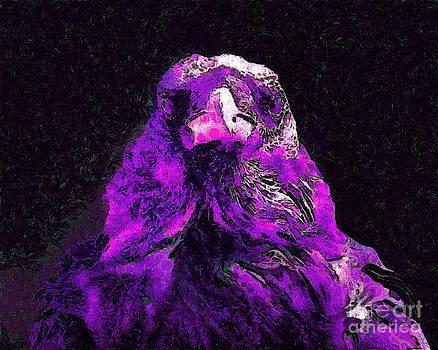 Wingsdomain Art and Photography - Raven In Van Gogh.s Dream . v2 . 40D9097