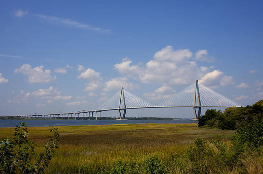 Terry Shoemaker - Ravenel bridge 02