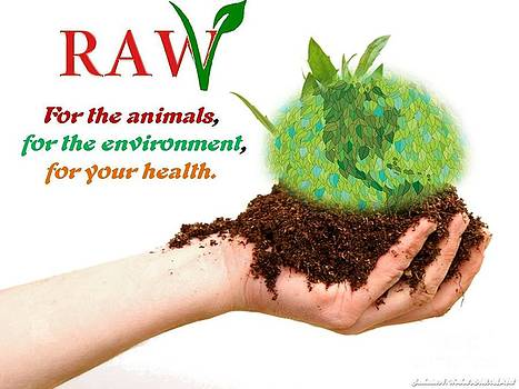 RAW For the Animals Environment and Your Health by Catherine Herbert