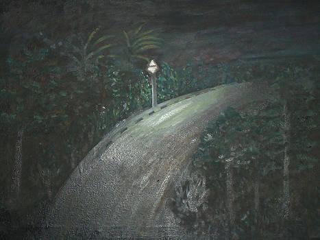 Ray of light by Shahid altaf Shayaf