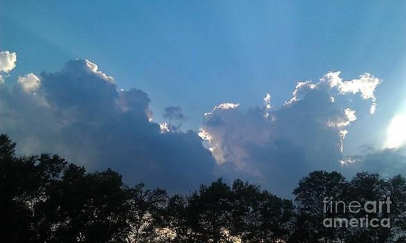 Rays of Sunshine 2 by Pepper Schaefer