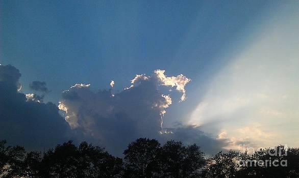 Rays of Sunshine by Pepper Schaefer