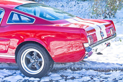James BO  Insogna - Red 1966 Ford Mustang Shelby Back