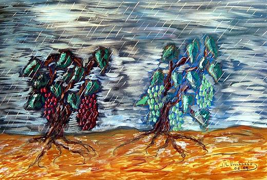 Red and white grapes under the rain by Jose Luis Villagran Ortiz