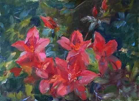 Red Azaleas by Ann Bailey